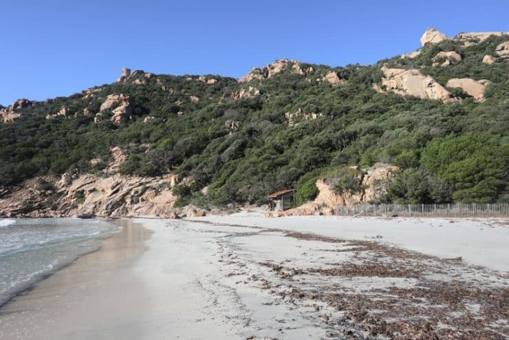 plage roccapina hiver