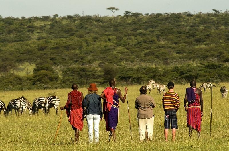 visiter la réserve nationale du masai mara