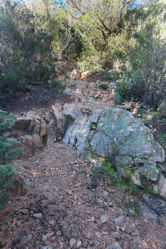 sentier randonnée roccapina