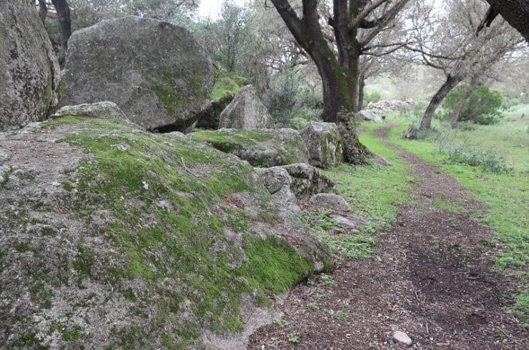 randonnée plateau cauria