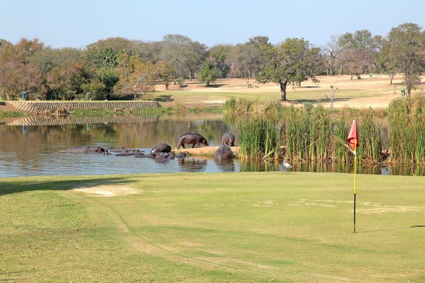 golf parc kruger