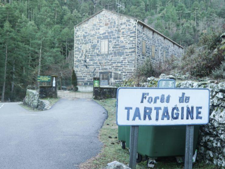 maison forestière tartagine