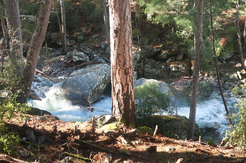 rivière tartagine