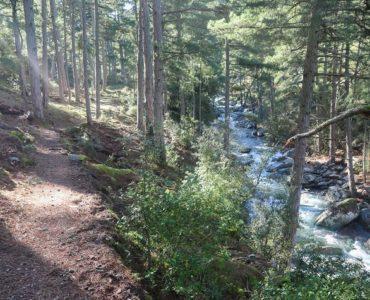 Sentier de découverte dans la forêt de Tartagine