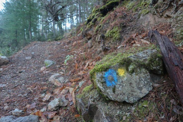 sentier de découverte foret de tartagine
