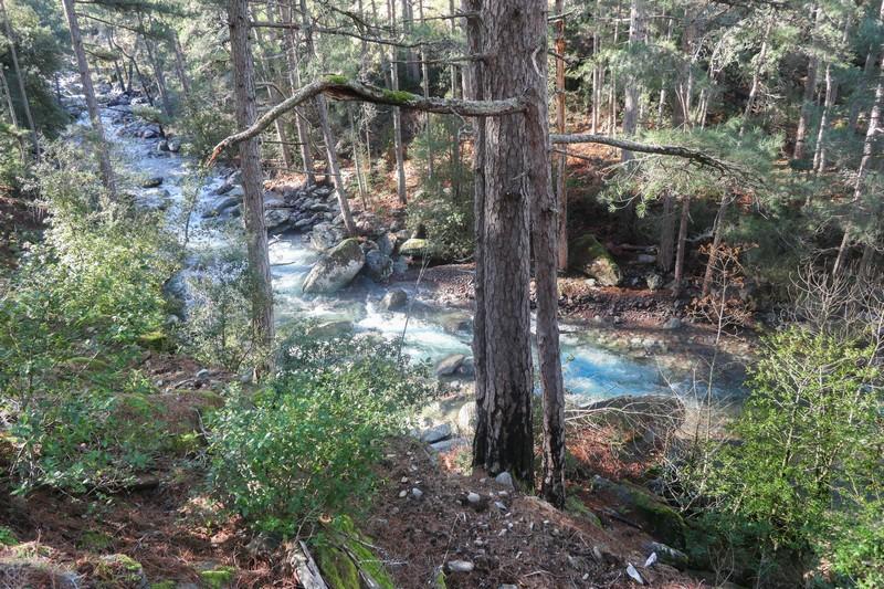 tartagine rivière