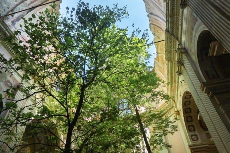 arbres intérieur église saint andré