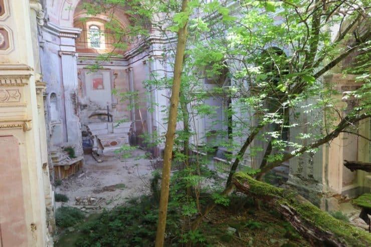 arbre intérieur église saint andré