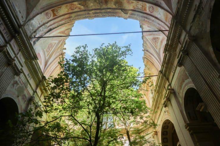 intérieur église arbre