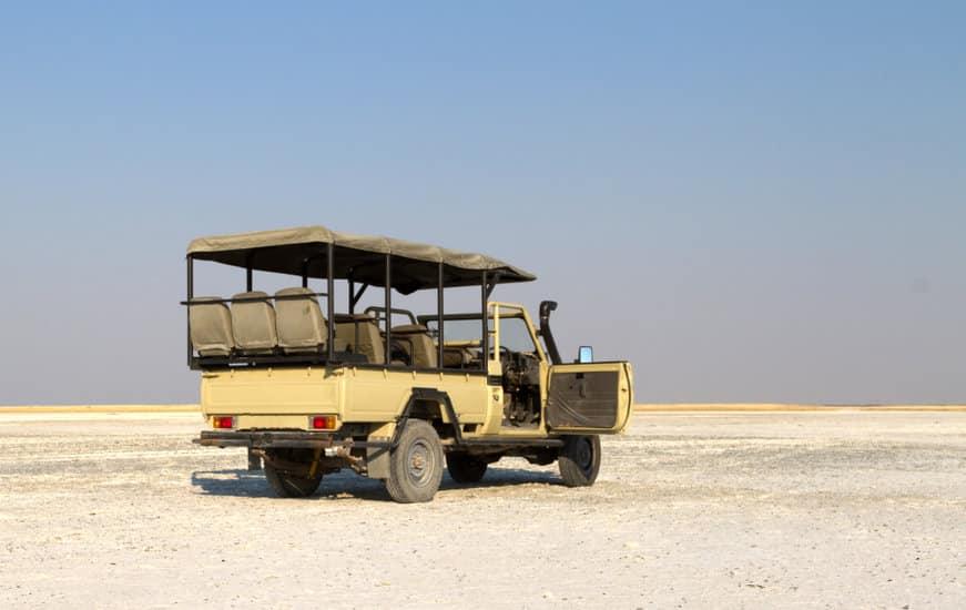 safari Makgadikgadi