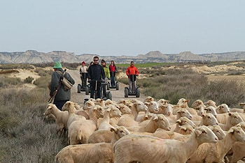 visite du désert des bardenas