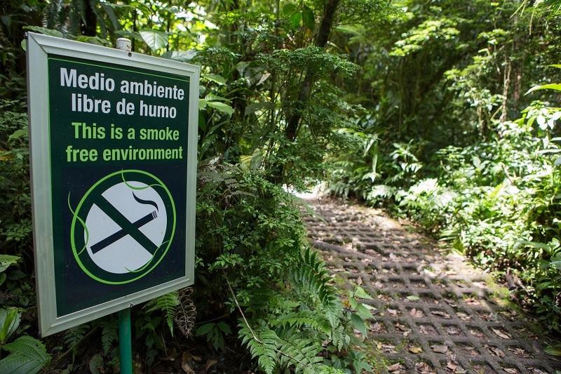 sentier monteverde