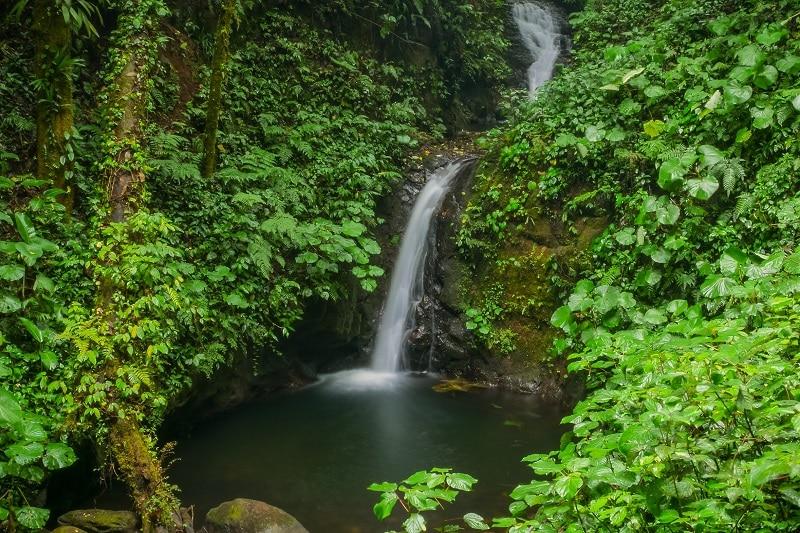 monteverde cascade