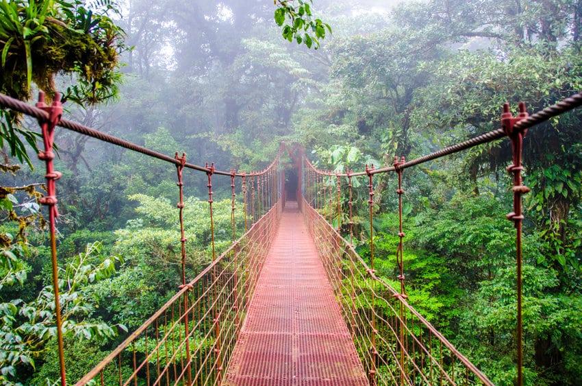 monteverde pont