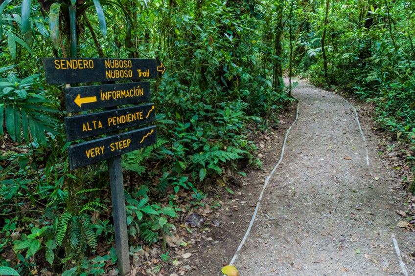 sentier réserve de monteverde