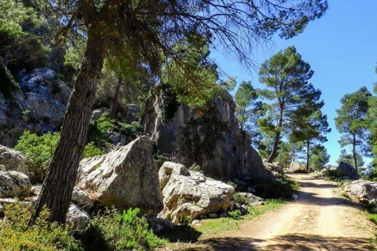 sentier Sierra Espuna