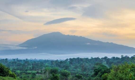 Que faire au Cameroun