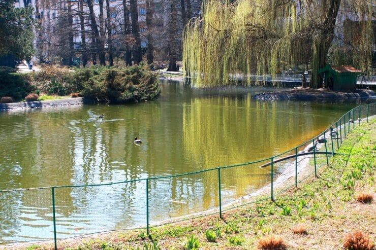 novi sad parc du danube